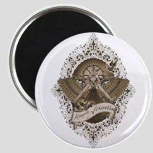 Magna Scientia Magnets