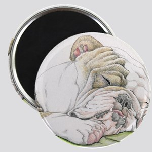 Sleepy English Bulldog Magnets