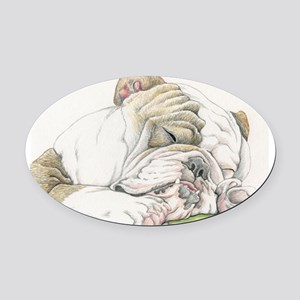 Sleepy English Bulldog Oval Car Magnet