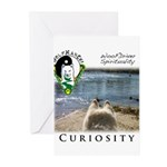 WMC Curiosity Front Greeting Cards