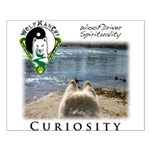 WMC Curiosity Front Posters