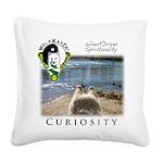 WMC Curiosity Front Square Canvas Pillow