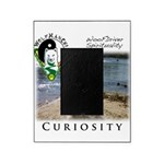 WMC Curiosity Front Picture Frame