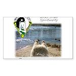 WMC Curiosity Front Sticker