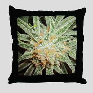 Cannabis Sativa Flower Throw Pillow