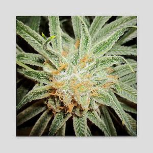 Cannabis Sativa Flower Queen Duvet