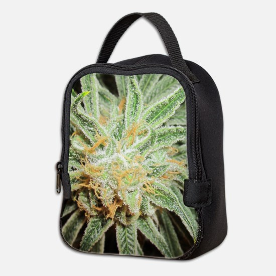 Cannabis Sativa Flower Neoprene Lunch Bag