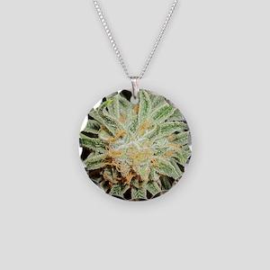 Cannabis Sativa Flower Necklace Circle Charm