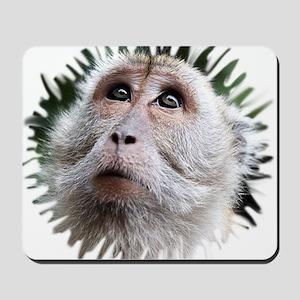 Adorable Monkey, Mask Mousepad