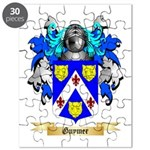 Guymer Puzzle
