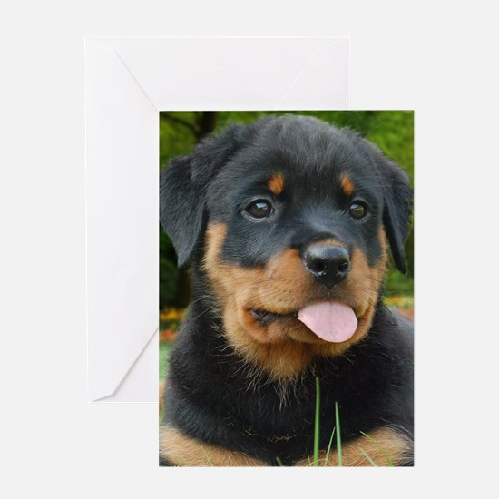Rottie Puppy Face Greeting Cards