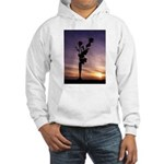 Red Roses At Sunset Hoodie