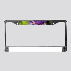 Purple Bearded Iris License Plate Frame