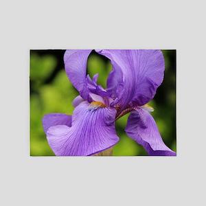 Purple Bearded Iris 5'x7'Area Rug