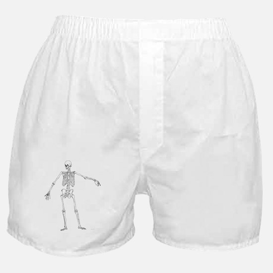 Unique Orthopedic Boxer Shorts
