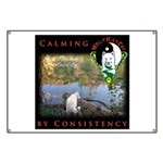 WMC Calming by Consistency Banner