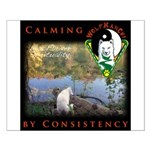 WMC Calming by Consistency Posters