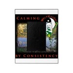 WMC Calming by Consistency Picture Frame