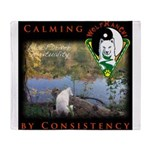 WMC Calming by Consistency Throw Blanket