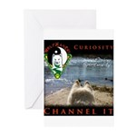 WMC Curiosity Channel IT Greeting Cards