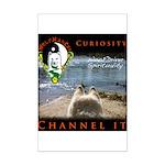 WMC Curiosity Channel IT Posters