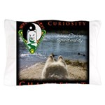 WMC Curiosity Channel IT Pillow Case