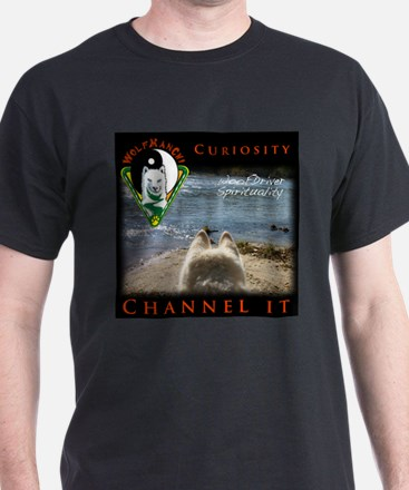 WMC Curiosity Channel IT T-Shirt