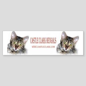 Bengal cat Bumper Sticker