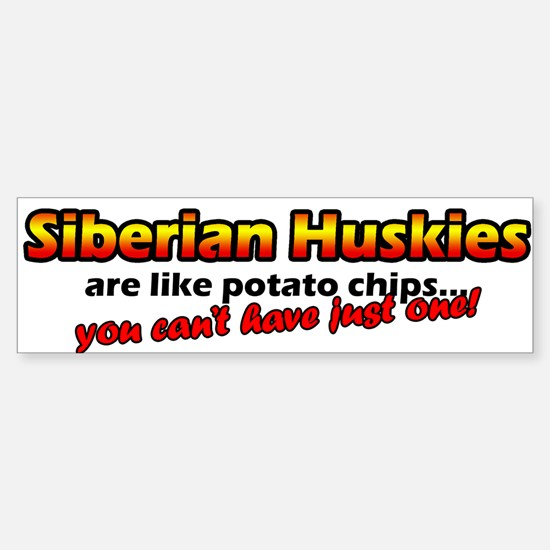 Potato Chips Siberian Husky Bumper Bumper Bumper Sticker