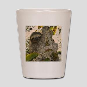 Sloth Shot Glass