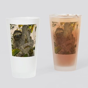 Sloth Drinking Glass