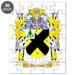Gulliver Puzzle