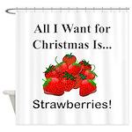 Christmas Strawberries Shower Curtain