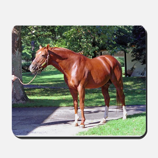 "SECRETARIAT - ""Big Red"" Mousepad"
