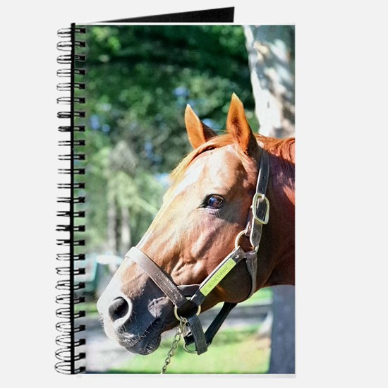 "SECRETARIAT - ""Big Red"" Journal"