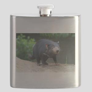 Cute Tasmanian Devil Photo Flask