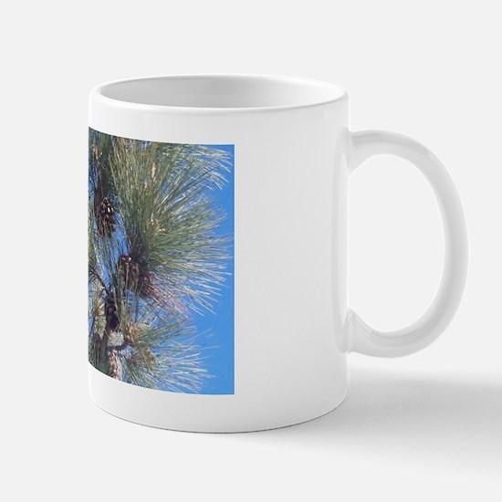 Torrey Pines Mugs