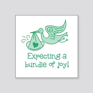 Expecting a Bundle of Joy Sticker