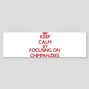 Chimpanzees Bumper Sticker
