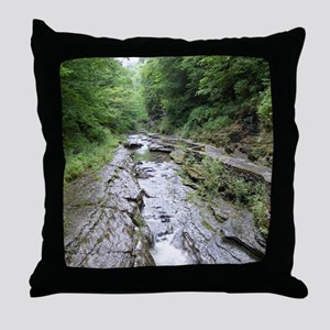 forest river scenery Throw Pillow