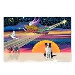 XmasStar/Border Collie Postcards (Package of 8)