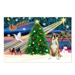 Xmas Magic & Boxer Postcards (Package of 8)