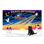 XmasSunrise/Brussels (blk) Postcards (Package of 8