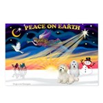 XmasSunrise/2 Cotons Postcards (Package of 8)