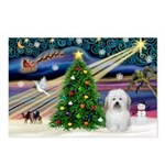 XmasMagic/ Coton Postcards (Package of 8)