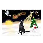 Night Flight/Fl Coat Retrieve Postcards (Package o