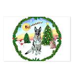 Take Off1/ German Shepherd Postcards (Package of 8