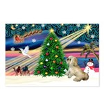XmasMagic/ Lhasa Apso Postcards (Package of 8)