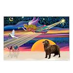 XmasStar/ Newfie Postcards (Package of 8)