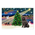 Xmas Magic/Newfie (#2) Postcards (Package of 8)